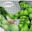 Hulk versus She Hulk – Part 2
